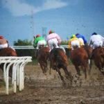 horse races_7413-[50-]