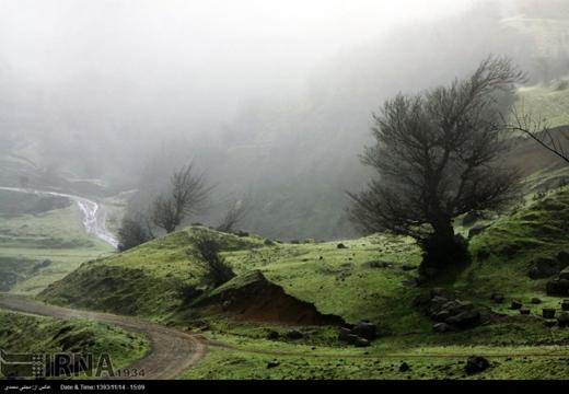 Fog in Rasht-Iran7