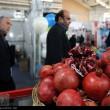 Organic food exhibition in Tehran 11