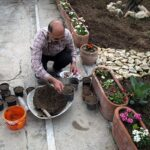 Domestic fish farming (44)