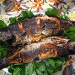 Domestic fish farming (75)