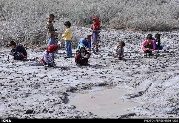 Kaji Namakzar Wetlands_106
