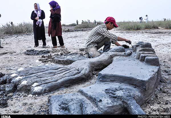 Kaji Namakzar Wetlands_107