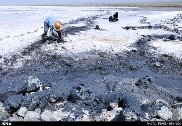 Kaji Namakzar Wetlands_108