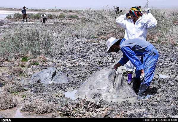 Kaji Namakzar Wetlands_115