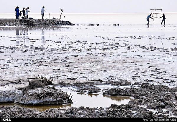 Kaji Namakzar Wetlands_126