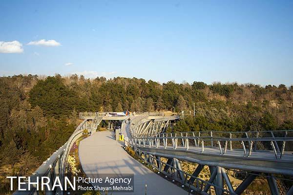 Nature Pedestrian Bridge-12
