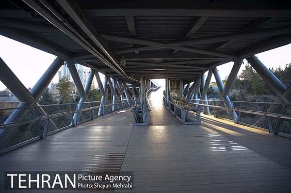 Nature Pedestrian Bridge-13