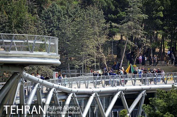 Nature Pedestrian Bridge-16