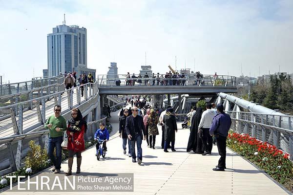Nature Pedestrian Bridge-17