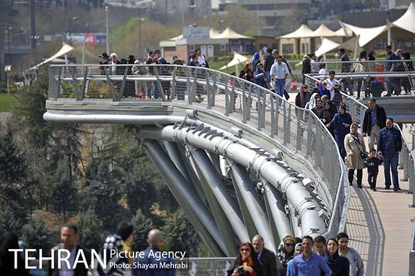 Nature Pedestrian Bridge-19