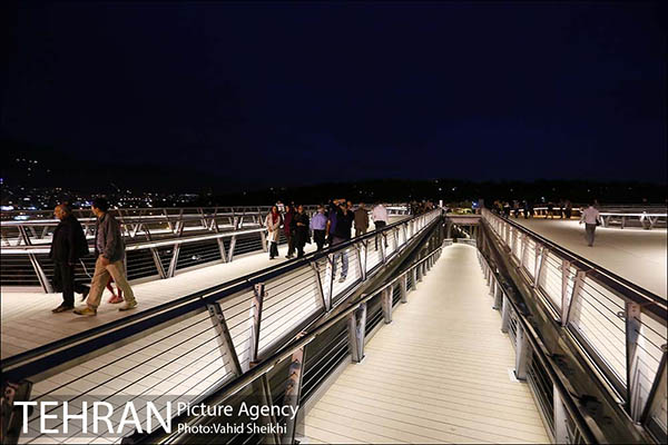 Nature Pedestrian Bridge-2