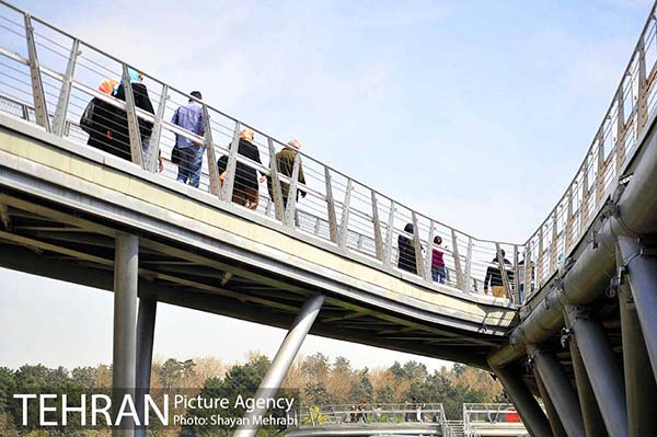 Nature Pedestrian Bridge-24