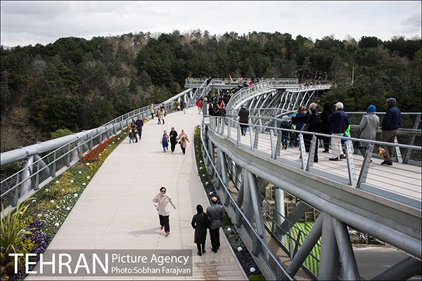Nature Pedestrian Bridge-29