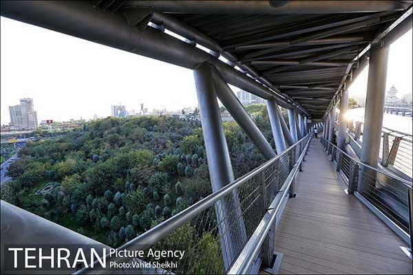 Nature Pedestrian Bridge-3