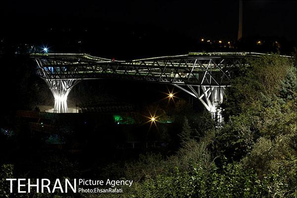 Nature Pedestrian Bridge-37