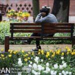 Persian garden Park11
