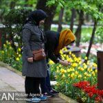 Persian garden Park14