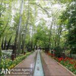 Persian garden Park16