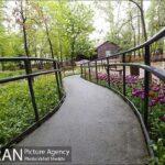 Persian garden Park17