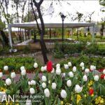 Persian garden Park22