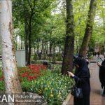 Persian garden Park23