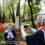 Persian garden Park25