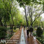 Persian garden Park28