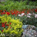 Persian garden Park35