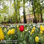 Persian garden Park36