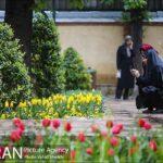 Persian garden Park4