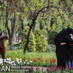 Persian garden Park7