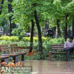 Persian garden Park8