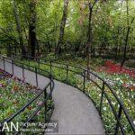 Persian garden Park9