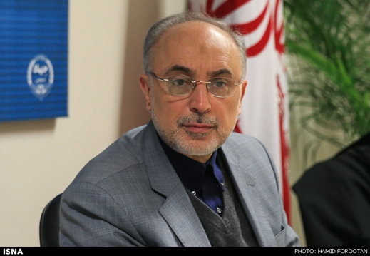Iran Condemns US Blacklisting of Its Nuclear Chief