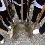 Traditional local ritual (20)
