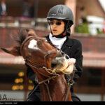 horse-jumping33