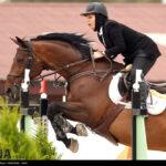 horse-jumping37