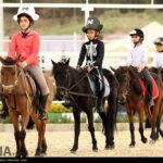 horse-jumping40