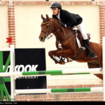 horse-jumping42
