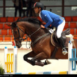 horse-jumping43