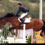 horse-jumping49