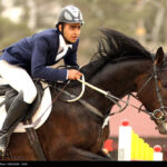 horse-jumping51