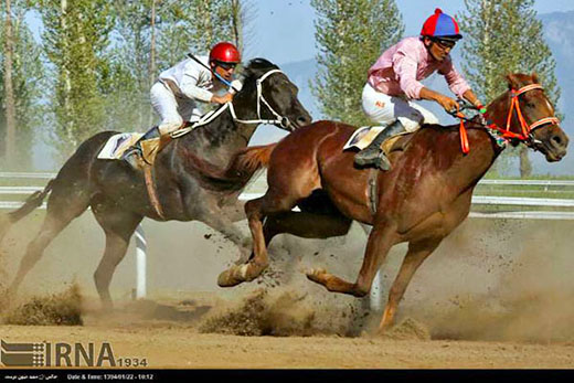 horse-racing tournament