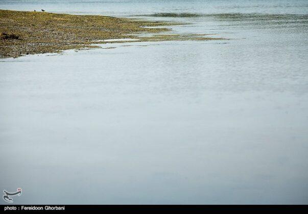 Nature of Qeshm Island - Iran
