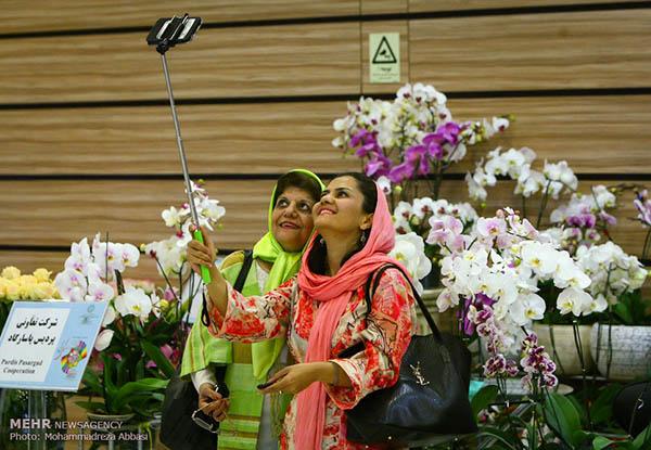 Tehran flower exhibition (PHOTOS) Persian Pomegranate Art