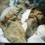 Iranian divers killed10