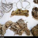 Iranian divers killed7