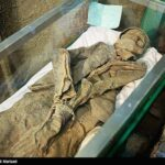 Iranian divers killed9