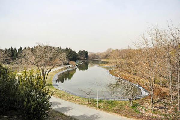National Botanical Garden021